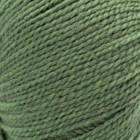 Semilla GOTS 20 Willow